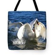 Swans Playing Tote Bag