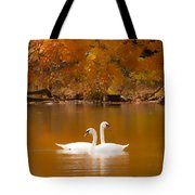 Swans Soft And Smooth Tote Bag