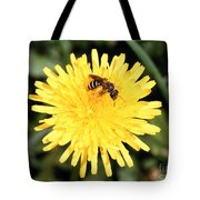Sweat Bee Tote Bag by Science Source