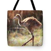Sweet Juvenile Sandhill Crane Tote Bag