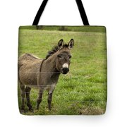 Sweet Little Donkey Tote Bag