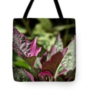 Sweet Potato Vine Tote Bag