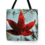 Sweetgum Tote Bag