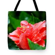 Sweetheart Red Tote Bag