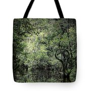 Sweetwater Strand Tote Bag