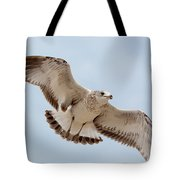 Swooping In For A Meal Tote Bag