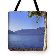sycamore tree at the Lake Maggiore Tote Bag