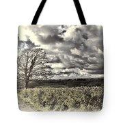Sycamore Tree Cream Tote Bag