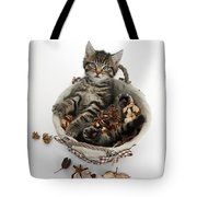 Tabby Kitten In Potpourri Basket Tote Bag