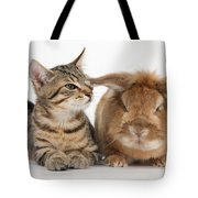 Tabby Kitten With Rabbit Tote Bag
