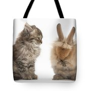 Tabby Kitten With Young Rabbit, Grooming Tote Bag