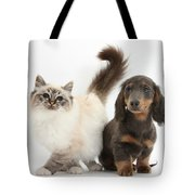 Tabby-point Birman And Dachshund Pup Tote Bag