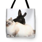 Tabby-point Birman Cat And Black Rabbit Tote Bag