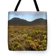 Table Mountain National Park Tote Bag