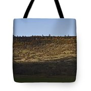 Table Rock Panorama Tote Bag