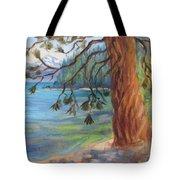 Tahoe Light Sugar Pine Point State Park Tote Bag