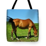 Tail Swatting Flies Tote Bag