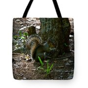 Tailfeathers Tote Bag