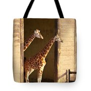 Taking A Look Tote Bag by Bob and Nancy Kendrick