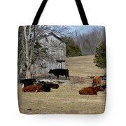 Taking It Easy Tote Bag
