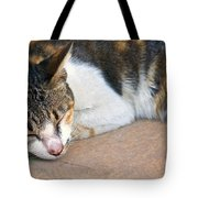 Taking  Nap Tote Bag