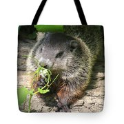 Taking Time To Smell The Flowers Tote Bag