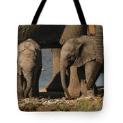 Tall And Short Tote Bag