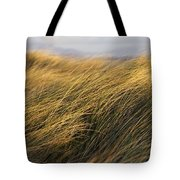 Tall Grass Blowing In The Wind Tote Bag