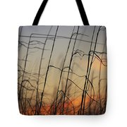 Tall Grasses Blowing In The Wind Tote Bag
