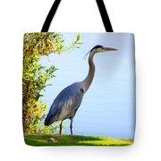Tall Grey Heron Tote Bag