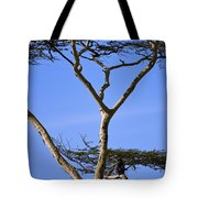 Tall Serengeti Tree And Baboon Tote Bag