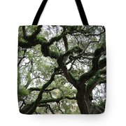 Tampa Trees Tote Bag