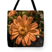 Tanacetum Painted In Red Tote Bag