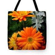 Tangerine Colored Gerbera Daisies Tote Bag