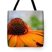 Tangerine Summer Tote Bag