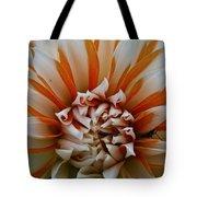 Tangerine Tinged Tote Bag