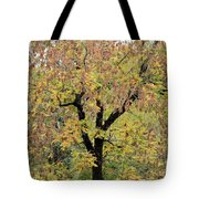 Tannehill Gold Tote Bag