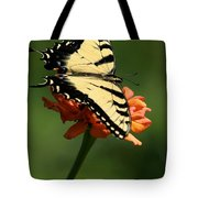Tantalizing Tiger Swallowtail Butterfly Tote Bag