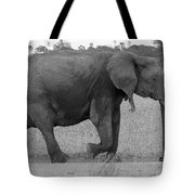 Tarangire Elephant On Road Tote Bag