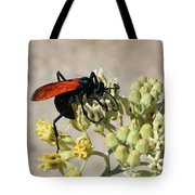 Tarantula Hawk Wasp Tote Bag