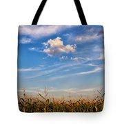Tassels And Sky Tote Bag