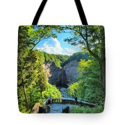 Taughannock Falls Overlook Tote Bag