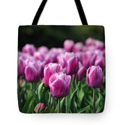 Taylor's Tulips Tote Bag