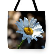 Tea Stained Daisy Tote Bag