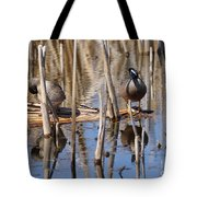 Teal Looking For Something Tote Bag