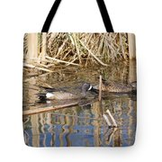 Teal Swiming Along Cattails Tote Bag