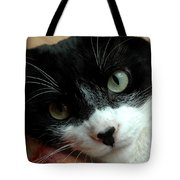Tell Me About Your Day Tote Bag