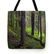 Temperate Rain Forest, Carmanah-walbran Tote Bag