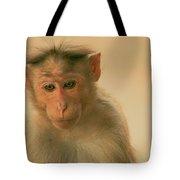 Temple Monkey Tote Bag