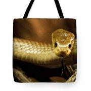 Tempter Tote Bag by Andrew Paranavitana